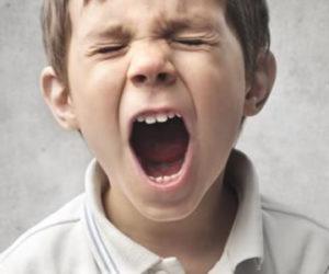 https://www.psicoadapta.es/blog/wp-content/uploads/2018/07/La-ira-en-niños-con-problemas-de-conducta-360x300.jpg