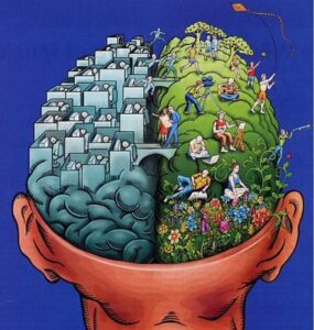 psicobiologia-2